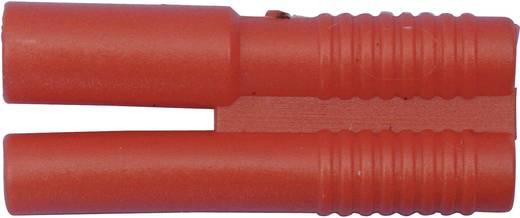 Akku Stecker, Akku Buchse 2 mm vergoldet 1 St. Modelcraft 71222