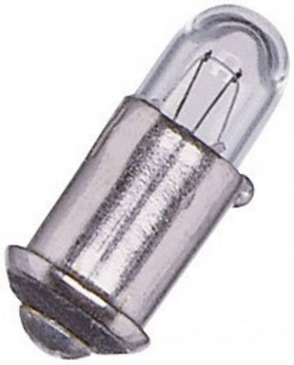 Spezialglühlampe Klar MS2.8, MM3s/6 19 V 30 mA 21501630