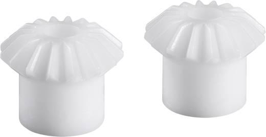 Acetalharz-Kegelrad Reely M1 K 1:2 Modul-Typ: 1.0 Anzahl Zähne: 15, 30 1 Paar