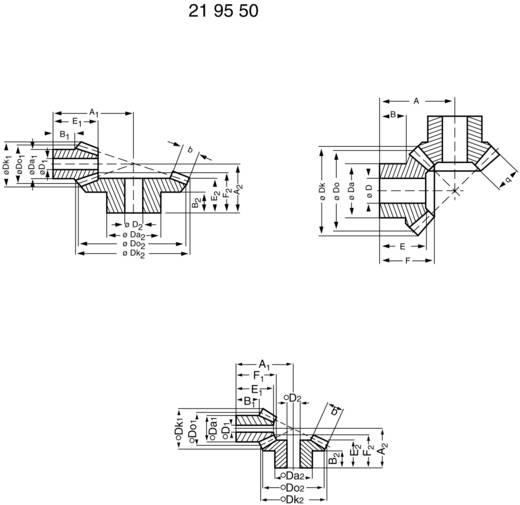Acetalharz-Kegelrad Reely M1 K 1:1 Modul-Typ: 1.0 Anzahl Zähne: 16, 16 1 Paar