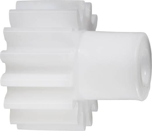 Acetalharz Stirnzahnrad Reely Modul-Typ: 1.0 Bohrungs-Ø: 4 mm Anzahl Zähne: 15