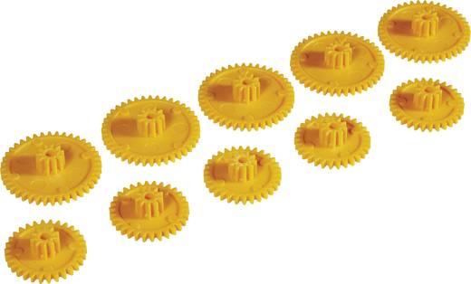 Kunststoff Zahnradsortiment Reely Modul-Typ: 1.0 10 St.