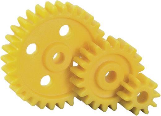 Kunststoff Zahnradsortiment Reely Modul-Typ: 1.0 Anzahl Zähne: 10, 20, 30 15 St.