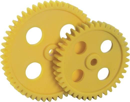 Kunststoff Zahnradsortiment Reely Modul-Typ: 1.0 Anzahl Zähne: 40, 50 10 St.