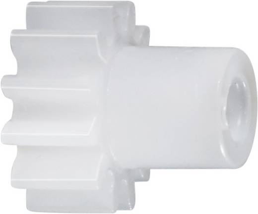Polyacetal Stirnzahnrad Reely Modul-Typ: 0.5 Bohrungs-Ø: 2 mm Anzahl Zähne: 12