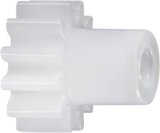 Polyacetal Stirnzahnrad Reely Modul-Typ: 0.5 Bohrungs-Ø: 4 mm Anzahl Zähne: 25
