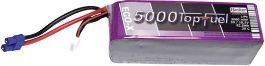 Modellbau-Akkupack (LiPo) 18.5 V 5000 mAh Zellen-Zahl: 5 20 C Hacker EC5