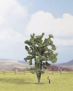 Image of Baum Akazie 150 mm NOCH 25850 1 St.