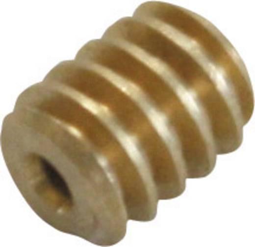 Messing Micro-Schnecke Modul 0.2 S8 (Ø x L) 2.8 mm x 3.5 mm 1 St.