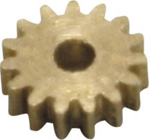 Messing Micro-Zahnrad Modul 0.2 Z19S Schrägverzahnt 1 St.