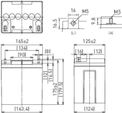 Bleiakku 12 V 28 Ah Panasonic 12 V 28 Ah LC-P1228AP Blei-Vlies (AGM) (B x H x T) 165 x 175 x 125 mm M5-Schraubanschluss Wartungsfrei