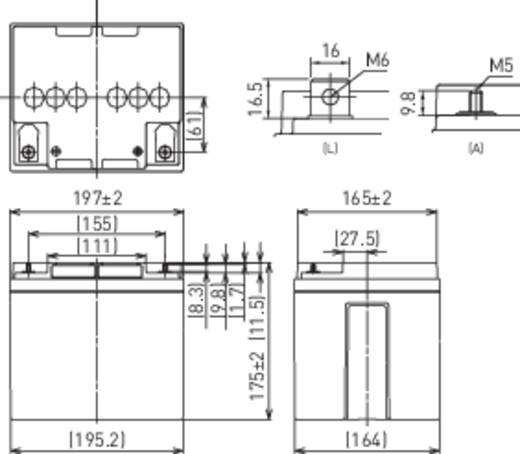 Bleiakku 12 V 38 Ah Panasonic LC-X1238P/AP LC-P1238APG Blei-Vlies (AGM) (B x H x T) 197 x 175 x 165 mm M5-Schraubanschlu