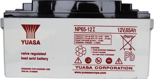 Bleiakku 12 V 65 Ah Yuasa NP65-12 NP65-12 Blei-Vlies (AGM) (B x H x T) 350 x 174 x 166 mm M6-Schraubanschluss Wartungsfr