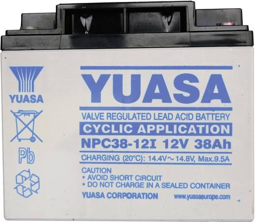 Yuasa NPC38-12 NPC38-12 Bleiakku 12 V 38 Ah Blei-Vlies (AGM) (B x H x T) 197 x 170 x 165 mm M5-Schraubanschluss Wartungs