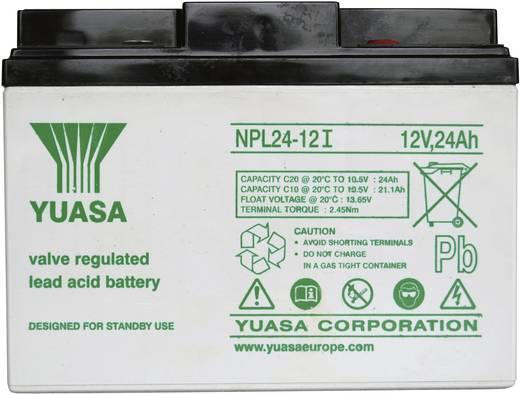 Bleiakku 12 V 24 Ah Yuasa NPL24-12 YUANPL24/12 Blei-Vlies (AGM) (B x H x T) 166 x 125 x 175 mm M5-Schraubanschluss Wartungsfrei