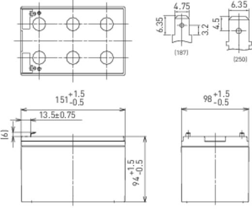 Bleiakku 12 V 15 Ah Panasonic 12 V 15 Ah LC-CA1215P1 Blei-Vlies (AGM) (B x H x T) 151 x 100 x 98 mm Flachstecker 6.35 mm