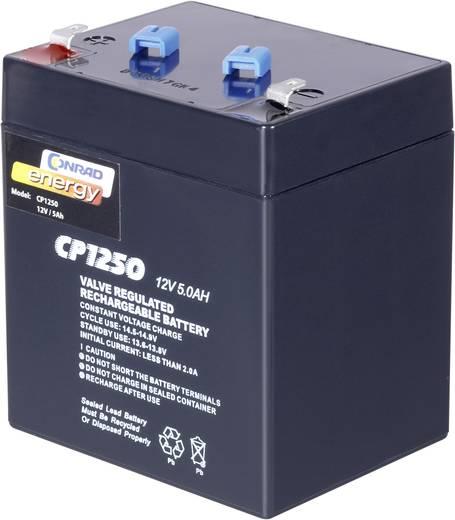 Bleiakku 12 V 5 Ah Conrad energy 12 V 5 Ah 250914 Blei-Vlies (AGM) (B x H x T) 90 x 101 x 70 mm Flachstecker 4.8 mm Wart
