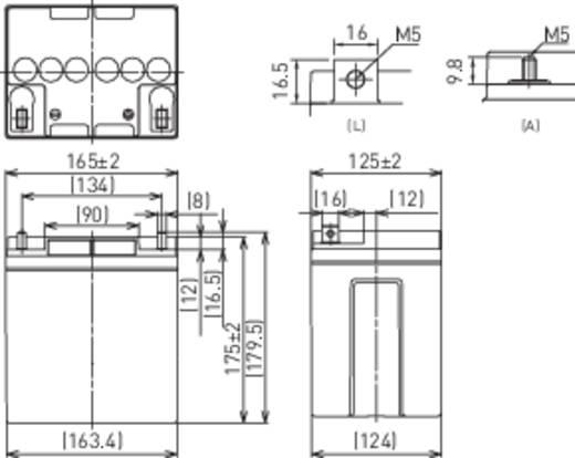 Bleiakku 12 V 28 Ah Panasonic 12 V 28 Ah LC-XC1228P Blei-Vlies (AGM) (B x H x T) 165 x 175 x 125 mm M5-Schraubanschluss