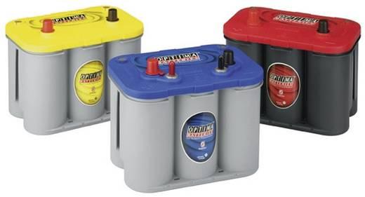 Bleiakku 12 V 55 Ah Optima Batteries BTDC4.2 8162530008882 Blei-Vlies (AGM) (B x H x T) 254 x 200 x 175 mm Konuspol, M5-