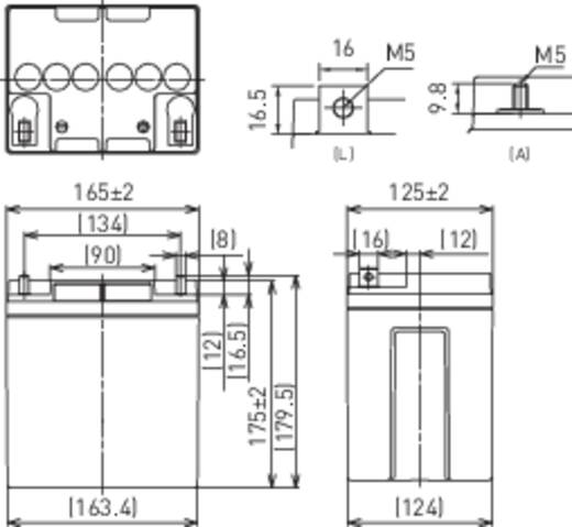 Bleiakku 12 V 24 Ah Panasonic 12 V 24 Ah LC-P1224APG Blei-Vlies (AGM) (B x H x T) 165 x 175 x 125 mm M5-Schraubanschluss