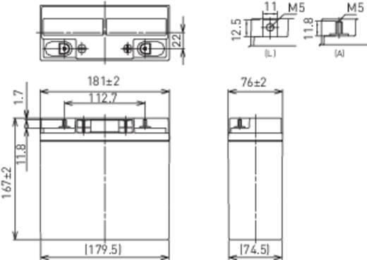 Panasonic 12 V 17 Ah LC-XD1217PG Bleiakku 12 V 17 Ah Blei-Vlies (AGM) (B x H x T) 181 x 167 x 76 mm M5-Schraubanschluss