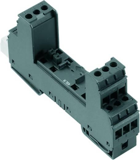 Weidmüller VSPC BASE 4SL R 8951750000 Überspannungsschutz-Sockel Überspannungsschutz für: Verteilerschrank