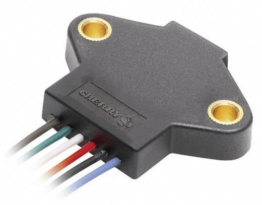 Winkel-/Positions-Sensor AN9