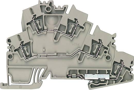 Doppelstock-Reihenklemme, Schutzleiter-Reihenklemme ZDKPE 2.5-2 DB+BR BED OR Weidmüller Inhalt: 50 St.