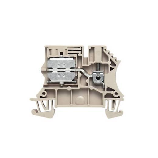 Neutralleiter-Trenn Reihenklemme WNT 2.5 10X3 BE Weidmüller Inhalt: 100 St.