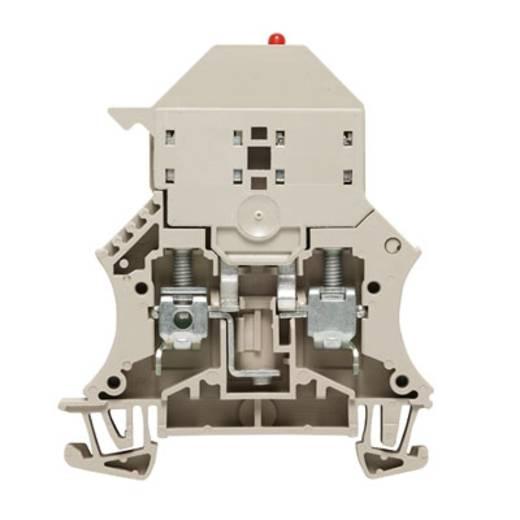 Sicherungs-Reihenklemme WSI 6/LD 60-150V DC/AC Weidmüller Inhalt: 50 St.