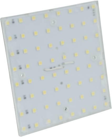 LED-Lampe Phaesun 360057