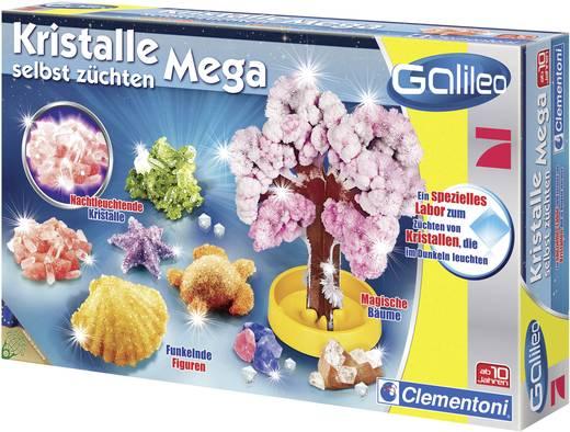 Clementoni - Galileo Kristalle selbst züchten Mega