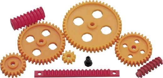 Modelcraft Kunststoff Zahnradsortiment Modul-Typ: 1.0 Anzahl Zähne: 10, 20, 30, 40, 50 1 Set