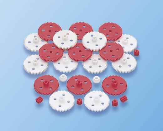 Reely Kunststoff Zahnradsortiment Modul-Typ: 0.5 Anzahl Zähne: 50, 10 1 Set
