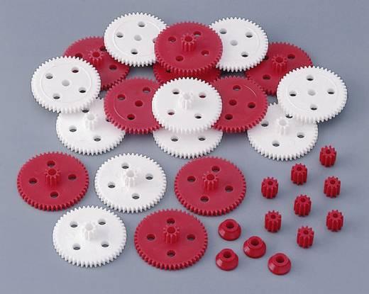 Kunststoff Zahnradsortiment Reely Modul-Typ: 0.5 Anzahl Zähne: 50, 10 1 Set
