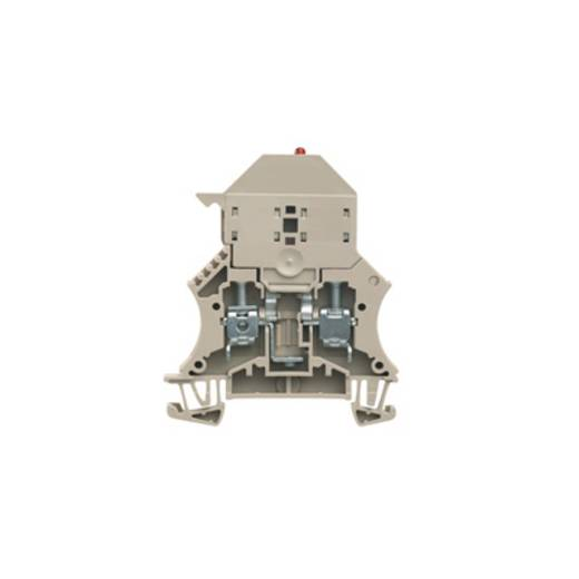 Sicherungs-Reihenklemme WSI 6/LD 10-36V LLC Weidmüller Inhalt: 50 St.