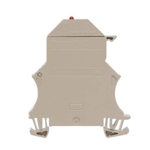 Sicherungs-Reihenklemme WSI 6/LD 60-150V LLC Weidmüller Inhalt: 50 St.