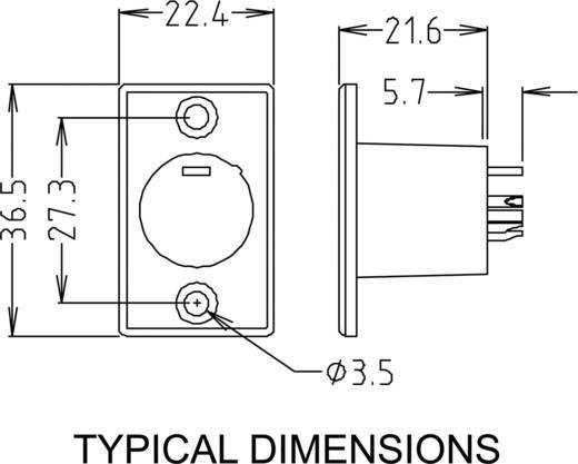 XLR-Einbaubuchse Paccs HST81EB
