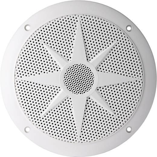 Außenlautsprecher Visaton FX 16 WP 80 W IP65 Weiß 1 St.