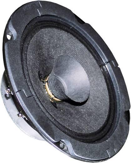 Visaton BG 13 P 5 Zoll 13 cm Breitband Lautsprecher-Chassis 20 W 8 Ω