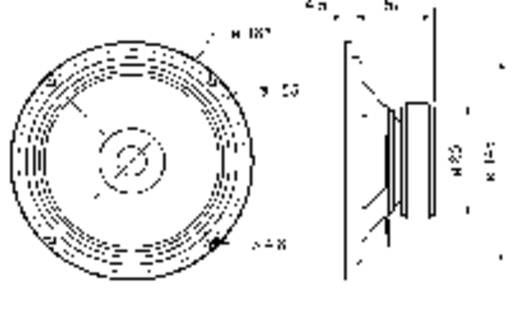 6.5 Zoll 16.51 cm Breitband Lautsprecher-Chassis Visaton BG 17 40 W 8 Ω