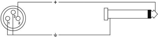 XLR Adapterkabel [1x XLR-Buchse - 1x Klinkenstecker 6.35 mm] 5 m Schwarz Cordial CPM 5 FP