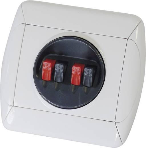 Lautsprecher-Wand-Anschlussterminal Weiß