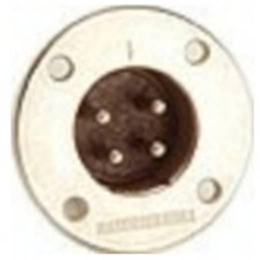 Adam Hall Connectors - Amphenol EP Serie - Lautsprecherbuchse 5-Pol male
