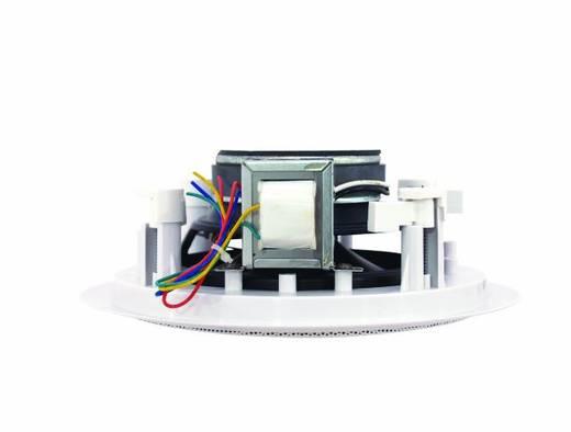 Einbaulautsprecher Omnitronic CST-6 30 W 100 V Weiß 1 St.