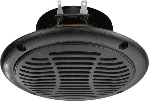 Außenlautsprecher Monacor SPE-110P/SW 30 W IP65 Schwarz 1 St.