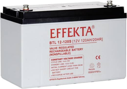 Effekta BTL 12-120S BZR-BTL12-120S Solarakku 12 V 120 Ah Blei-Vlies (AGM) (B x H x T) 330 x 220 x 171 mm