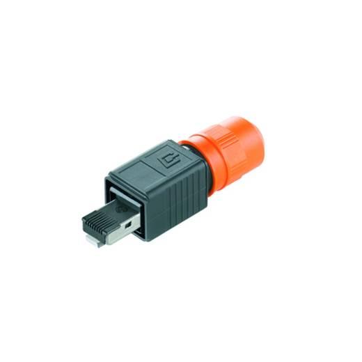 Sensor-/Aktor-Datensteckverbinder Buchse, gerade Weidmüller 1271240000 IE-PS-V04P-RJ45-FH-B 10 St.
