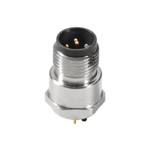 Weidmüller 1312980000 Sensor-/Aktor-Einbausteckverbinder M12 Stecker, Einbau Polzahl: 5 500 St.