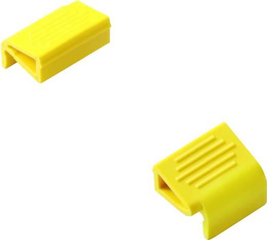 Überspannungsschutz-Befestigungselement 100er Set Überspannungsschutz für: Verteilerschrank Weidmüller VSPC LOCKING CLIP